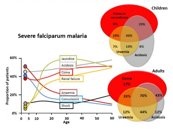 Severe falciparum malaria predictors with associated fatalities